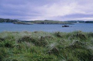 201108-ireland-4-26-055